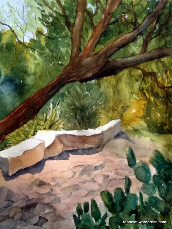 mesquite_shade_rachel_murphree_watercolors_finished-001